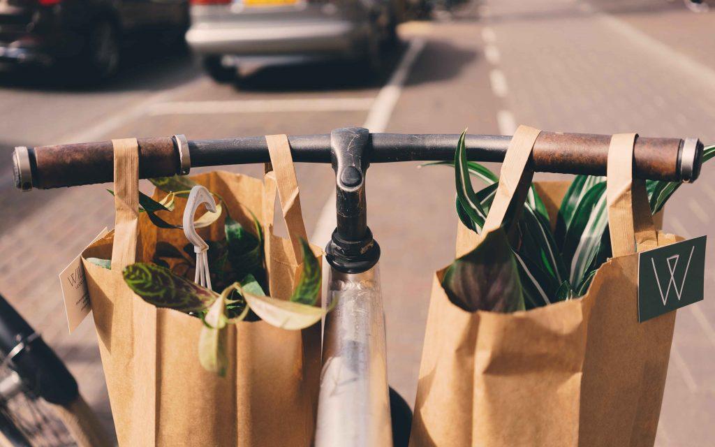 bespaartips-supermarkt-seizoensboodschappen