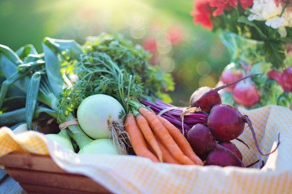 groenten-eten