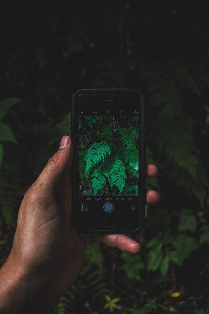 smartphone-foto-4
