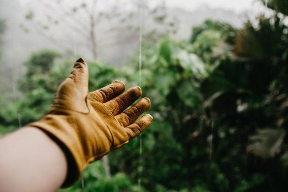 nieuwe-tuin-aanleggen-tipify