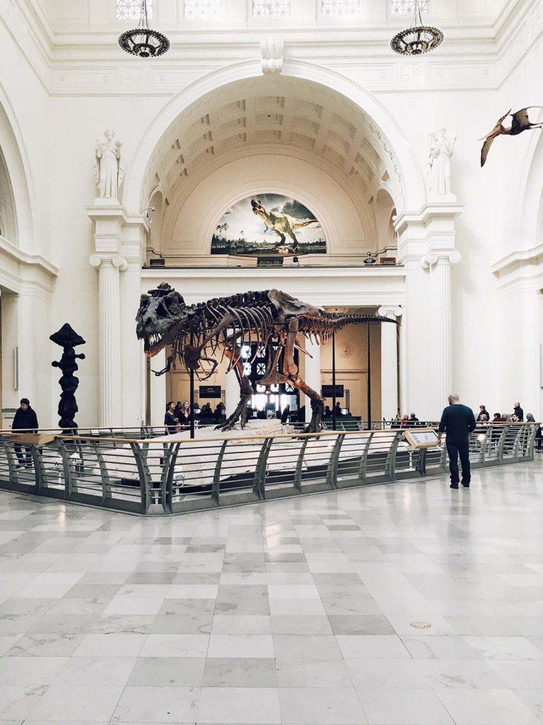 museum-dagje-uit-tipify