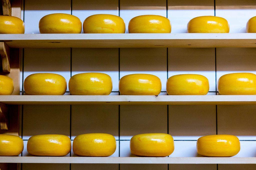 duurzaam-kaas-tipify